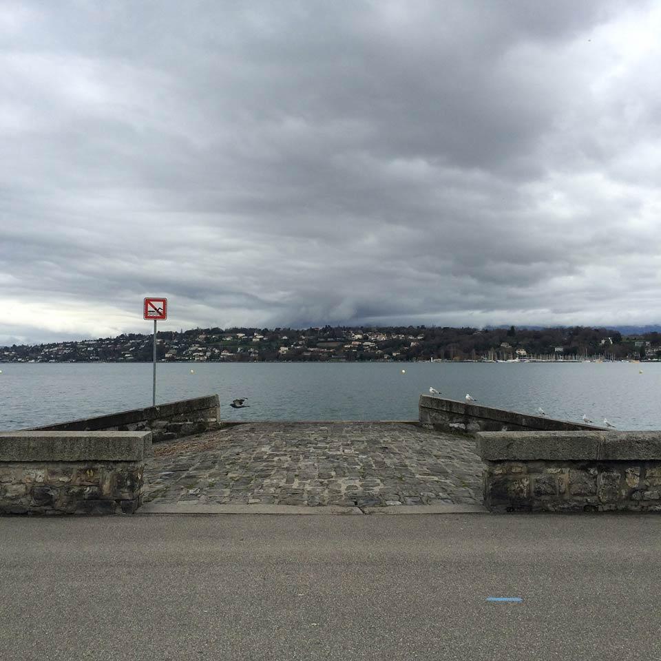 bord du lac à Genève, avec le coteau de Cologny en arrière plan